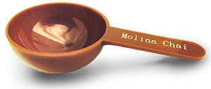 Molina Chai Scoop